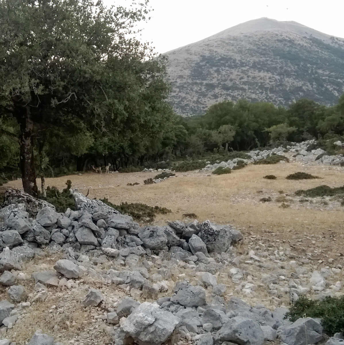 Kefalonia Walking Trails - Kefalonia Hiking - Kefalonia Trekking - Day Tours Kefalonia - Trail Running in Kefalonia -  Walking Trails Sami Kefalonia -Kefalonia Trekking - Kefalonia Hiking Tours